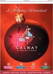 Galway Advertiser 2004/2004_12_02/GA_0212_E1_007.pdf